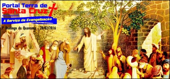 3º Domingo da Quaresma – Deus deseja que produzamos frutos.