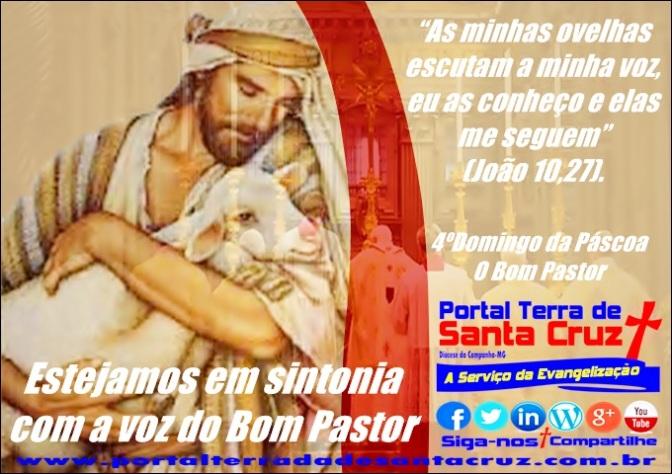 4º Domingo da Páscoa – Estejamos em sintonia com a voz do Bom Pastor.