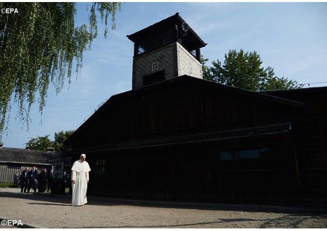 ESPECIAL JMJ: Jovens e as lições de Auschwitz hoje o perdão e misericórdia