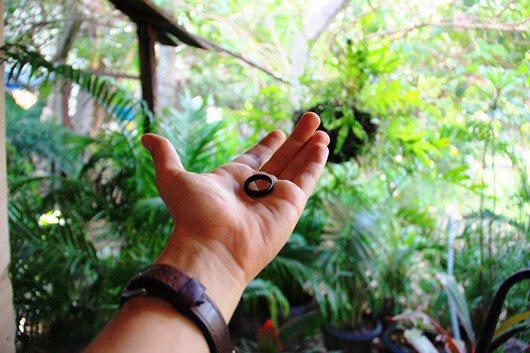 Qual o significado do anel de tucum usado por muitos religiosos?