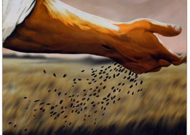 """""""A semente que cai em terra boa produz muito fruto"""""""